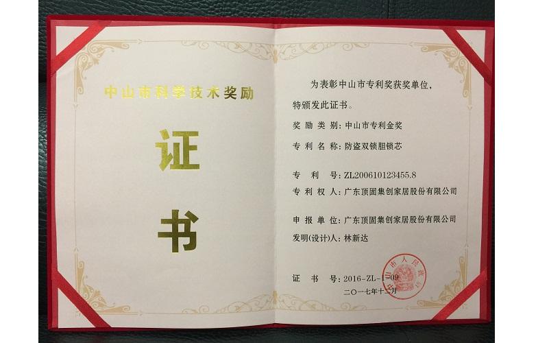 中山市专利金奖-防盗双锁胆锁芯